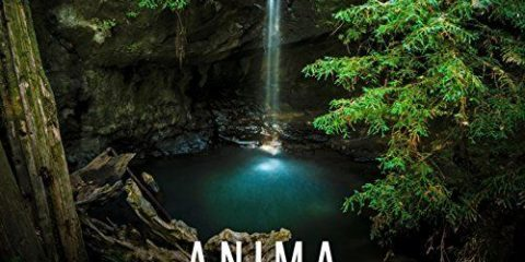 Anima sola Cover_preview