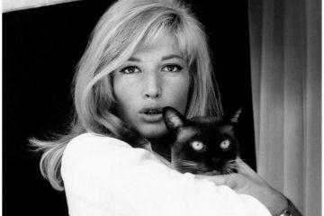 monica-vitti-the-italian-actress