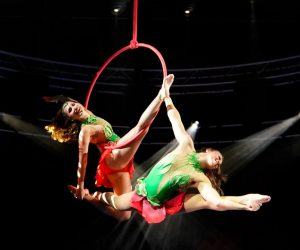 Duo Lyrical Lyra_Le Cirque WTP pic