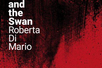 Roberta Di Mario - Leda and the Swan