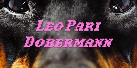 DOBERMANN - LEO PARI